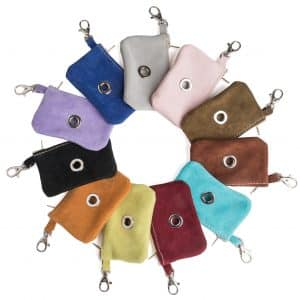 colourful dog accessories
