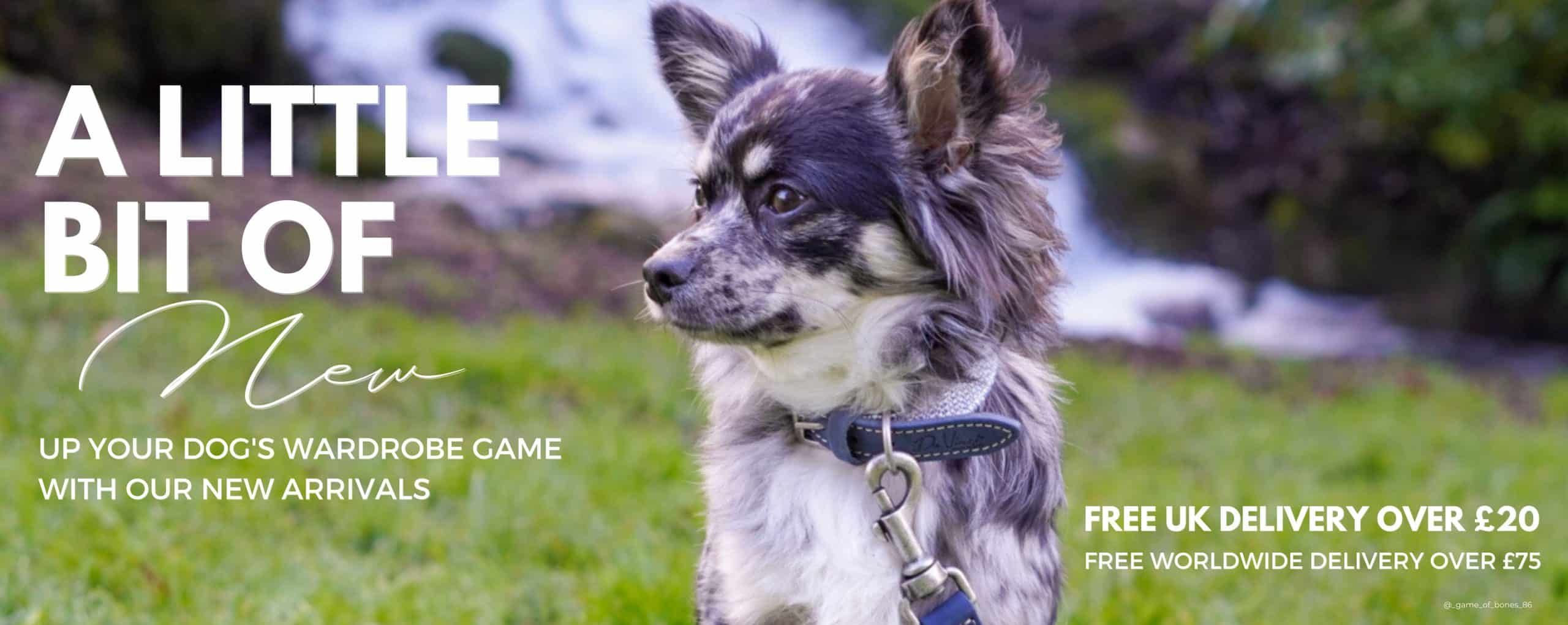 New Dog Collars & Leads Home Page Banner